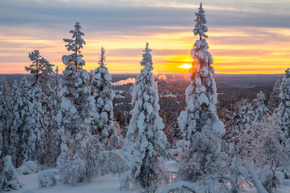 Finlandia, zimowy krajobraz w okolicach Saariselka
